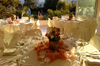 Κτήματα Γάμου FILOXENIA Καπανδρίτι